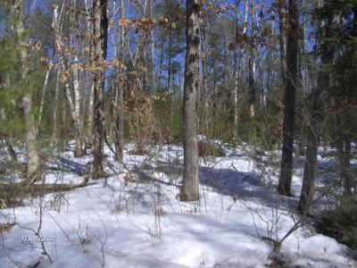 Menominee County, Marinette County Residential Lots & Land For Sale: 4.15 Acres W 26th Rd
