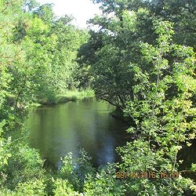 Wausaukee WI Residential Lots & Land For Sale: $29,900