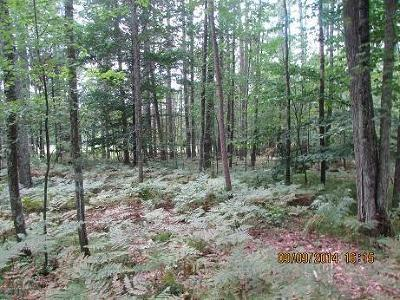 Menominee County, Marinette County Residential Lots & Land For Sale: Lt.6 White Pine Ln