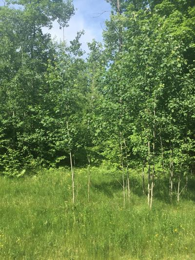 Menominee County, Marinette County Residential Lots & Land For Sale: Lt.58 Hwy Rr