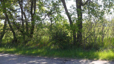 Menominee County, Marinette County Residential Lots & Land For Sale: Lt0 Faxton St