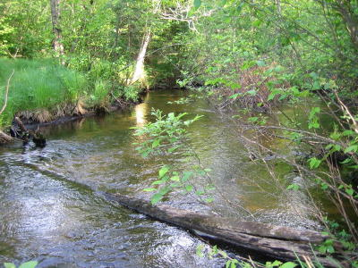 Menominee County, Marinette County Residential Lots & Land For Sale: Tbd Northwoods Ln