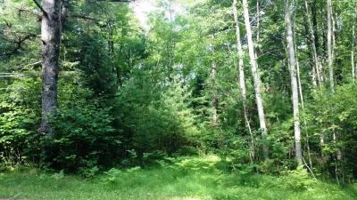 Wausaukee WI Residential Lots & Land For Sale: $38,000