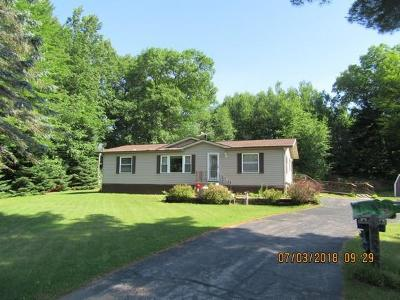 Crivitz Single Family Home For Sale: W6260 Pioneer Rd