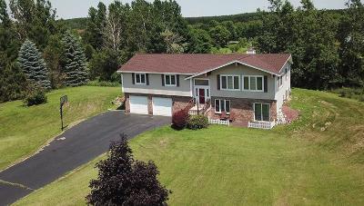Hartford Single Family Home For Sale: 1714 Irish Dr