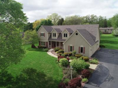 Brookfield Single Family Home For Sale: 14960 Shamrock Ln