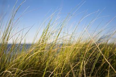 Sheboygan Falls Residential Lots & Land For Sale: Lt #5 Kapur