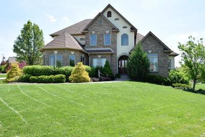 Racine County Single Family Home For Sale: 165 Chelsea Ln