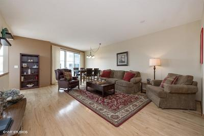 Condo/Townhouse Active Contingent With Offer: 2174 N Commerce St #6C