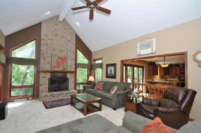 Racine County Single Family Home For Sale: 6835 Park Ln