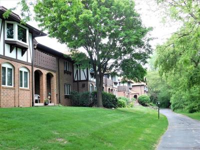 Glendale Condo/Townhouse Active Contingent With Offer: 6575 N Green Bay Ave #203