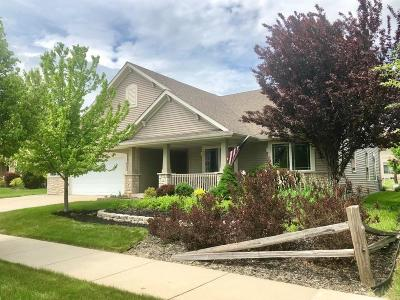 Kenosha Single Family Home Active Contingent With Offer: 5314 34th St