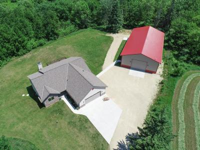 Washington County Single Family Home Active Contingent With Offer: 7406 Townline Rd