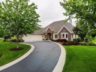 Hartland Single Family Home Active Contingent With Offer: W283n6282 Hibritten Way