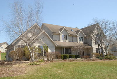 Racine County Single Family Home For Sale: 5355 Old Farm Rd