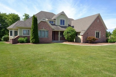 Hartland Single Family Home For Sale: 357 Switch Grass Ct