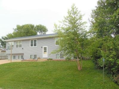 Racine County Single Family Home Active Contingent With Offer: 25207 Kickapoo Dr