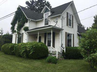 Racine County Single Family Home For Sale: 19120 Washington Ave