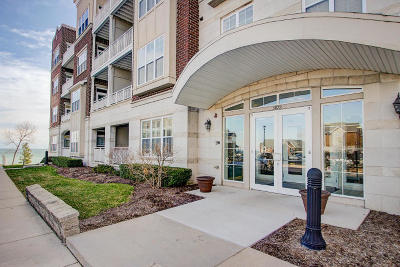 Milwaukee County Condo/Townhouse Active Contingent With Offer: 3872 S Lake Dr #110
