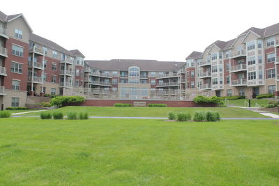 Milwaukee County Condo/Townhouse For Sale: 4110 S Lake #337