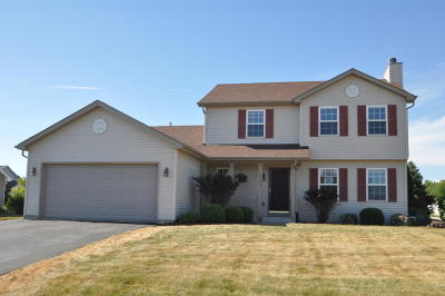 Racine County Single Family Home For Sale: 2483 5 Mile Rd