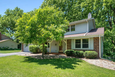 Hartland Single Family Home Active Contingent With Offer: 2021 Nagawicka Rd