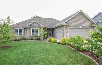 Racine County Single Family Home For Sale: 8817 Citadel Ter