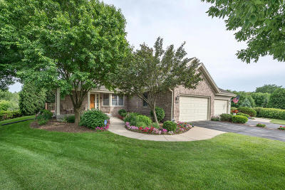 Brookfield Condo/Townhouse Active Contingent With Offer: 610 Chadburn Ct #A