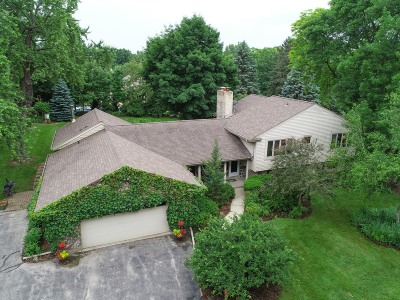 Brookfield Single Family Home For Sale: 19555 Benington Dr