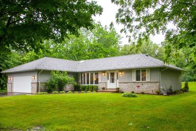 Williams Bay Single Family Home For Sale: 118 Hillview Rd