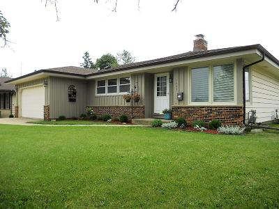 Kenosha County Single Family Home For Sale: 3807 Van Buren Rd