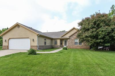 Kenosha County Single Family Home For Sale: 226 Christie Ln