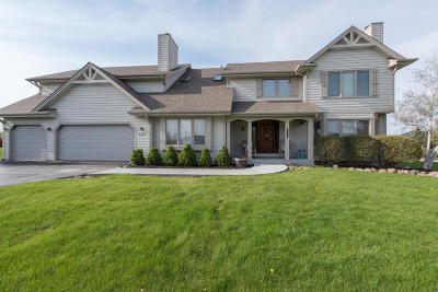 Pleasant Prairie WI Single Family Home Active Contingent With Offer: $429,900