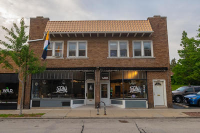 Milwaukee Commercial For Sale: 3062-3070 S Delaware