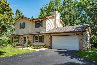 Oconomowoc Single Family Home Active Contingent With Offer: N53w35840 W Lake Dr