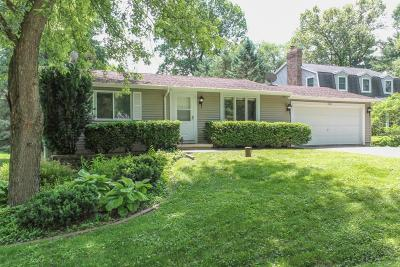 Cambridge Single Family Home For Sale: W9045 Lakeview Dr