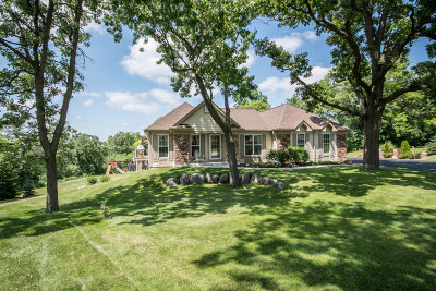 Wales Single Family Home For Sale: 211 Kummrow Ct