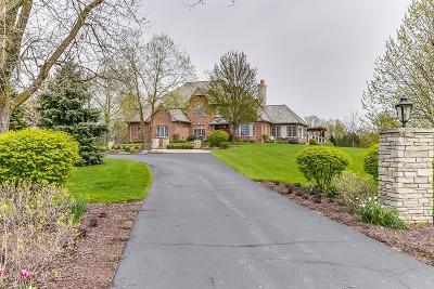 Kenosha County Single Family Home For Sale: 30010 49th St