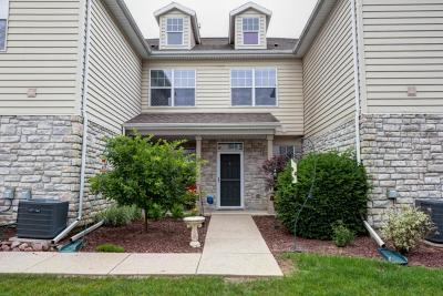 Pewaukee Condo/Townhouse Active Contingent With Offer: N16w26443 Meadowgrass Cir #G