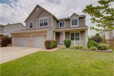 Kenosha Single Family Home Active Contingent With Offer: 11002 64th St