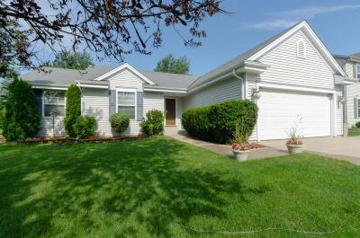 Watertown Single Family Home Active Contingent With Offer: 618 Bridlewood Ln