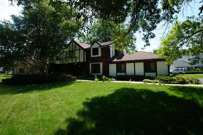 Brookfield Single Family Home For Sale: 15985 Pomona Rd