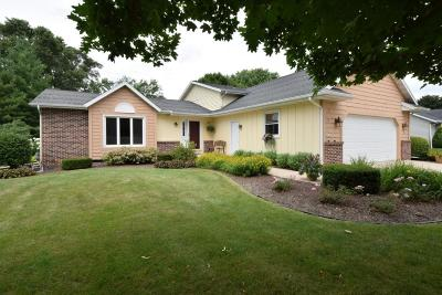 Waterford Single Family Home Active Contingent With Offer: 29756 Clover Ln