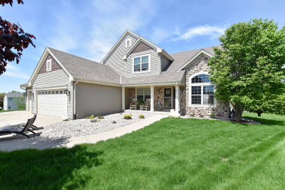 Racine County Single Family Home For Sale: 715 Apple Orchard Dr