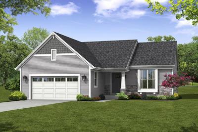 Port Washington Single Family Home For Sale: 365 Blazing Star Cir