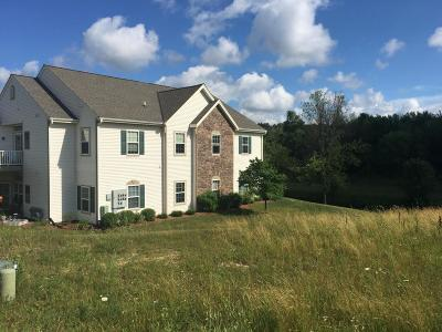 Washington County Condo/Townhouse Active Contingent With Offer: 551 Lakeridge Ct