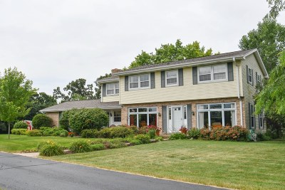 Dousman Single Family Home Active Contingent With Offer: S46w36545 Carriage Dr