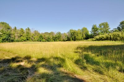 Mequon Residential Lots & Land For Sale: 13068 N Fox Hollow