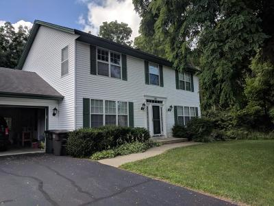 Lake Geneva Single Family Home Active Contingent With Offer: 580 Garrison