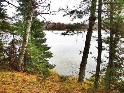 Niagara Residential Lots & Land For Sale: W5776 Pinewood Dr